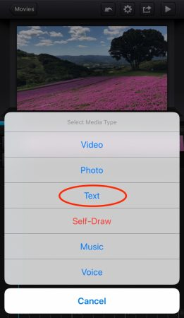 Add shadow to the text by cute cut pro2