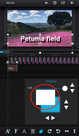Add shadow to the text by cute cut pro6