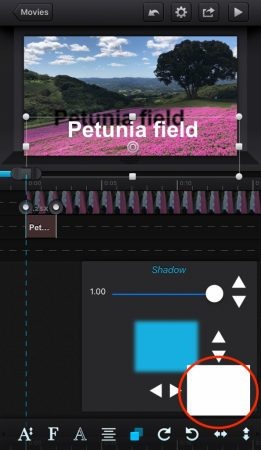 Add shadow to the text by cute cut pro7