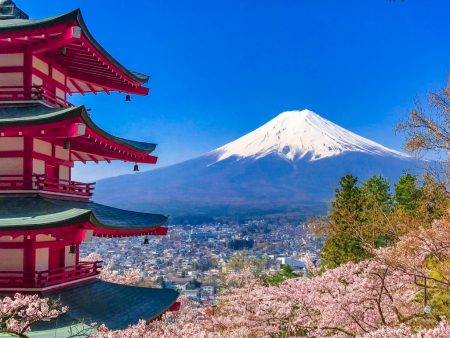 Cherry blossoms and 5 story pagoda in Arakurayama Sengen Park